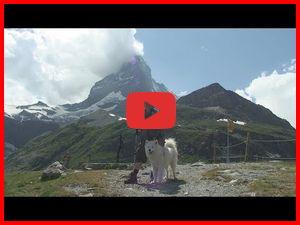 Альпийская мозаика. Фильм 3. Швейцария. К Маттерхорну